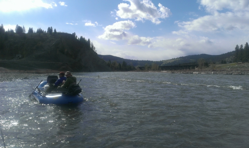 clark-fork-river-fishing-report-05