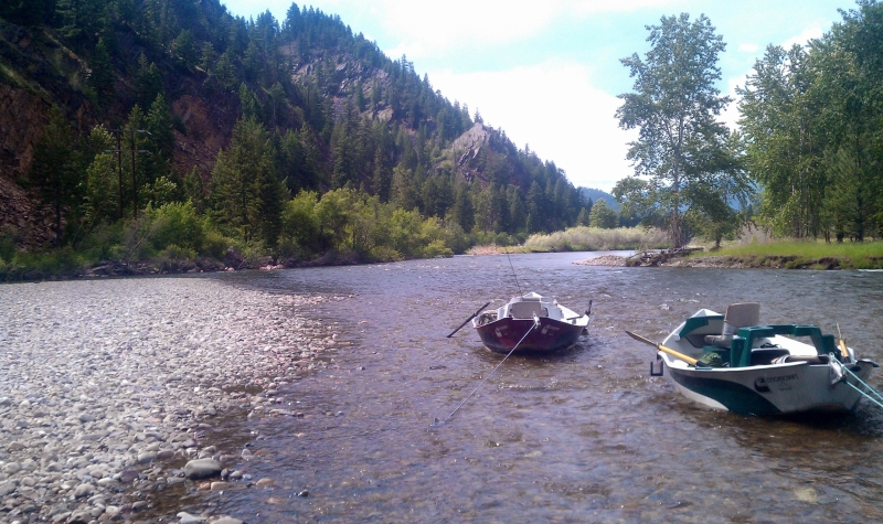 clark-fork-river-fishing-report-10